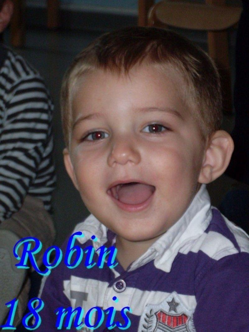 robin18mois.jpg